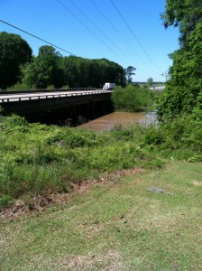 This picture, taken from the top of the hill near a picnic table at Spring Creek Park in Colquitt, GA on 4/21/14, shows water from the Spring Creek overflowing its banks