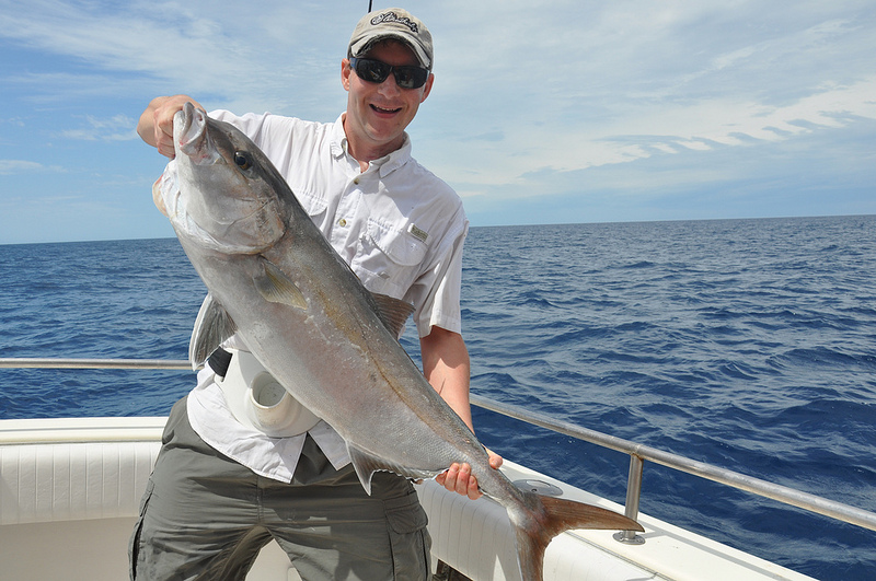 Gulf greater amberjack season now open sowega live for What saltwater fish are in season now