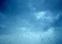 rain_BG_WEB