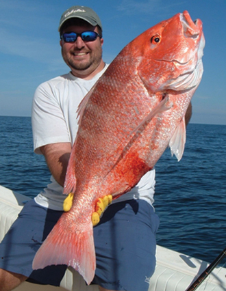 Florida approves 70 day recreational red snapper season in for Red snapper fishing
