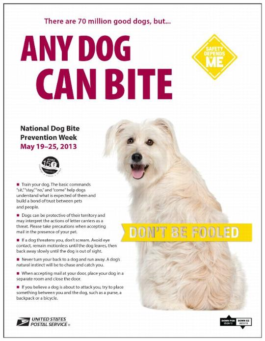 National Dog Bite Week