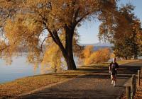 fall-jogging