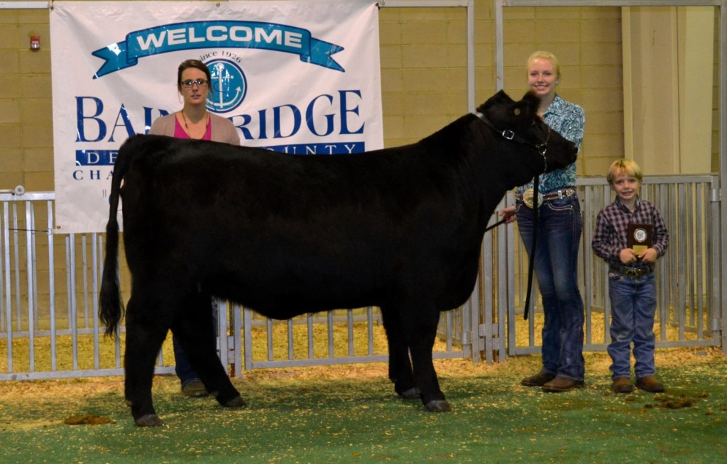 Taylor Barber won Grand Champion Commercial Heifer L-R: show judge, Victoria Hill, Taylor Barber, Jake Barber