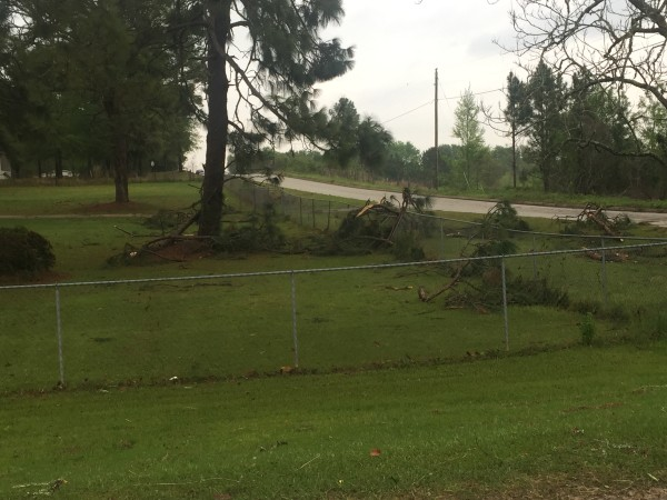 Weather Photos From Last Night S Storm Damage Sowega Live
