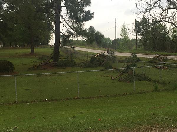 storm damage 10