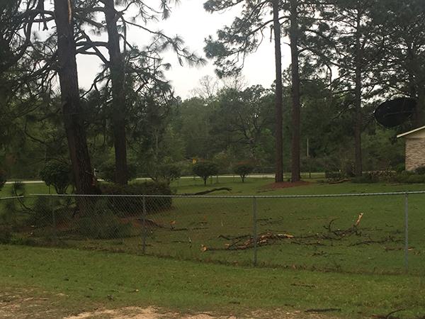 storm damage 12