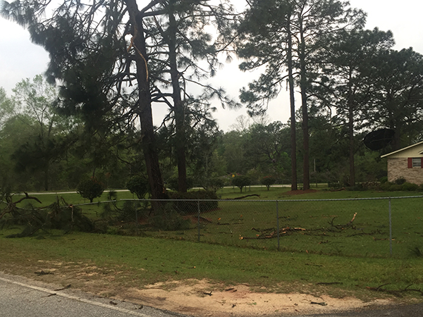 storm damage 13