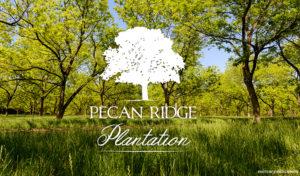 Pecan+Ridge+Plantation+Logo+pic